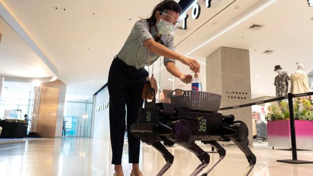 Mùa mua sắm cuối năm: robot sẽ là nhân vật chính? - Ảnh 2.