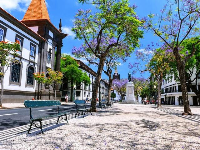 Quần đảo Madeira được vinh danh là điểm đến tốt nhất ở châu Âu  - Ảnh 15.