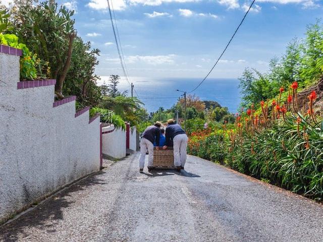 Quần đảo Madeira được vinh danh là điểm đến tốt nhất ở châu Âu  - Ảnh 16.