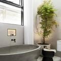 Nước mát và cây xanh trong phòng tắm