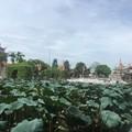 Về Hải Dương, nhớ ghé thăm Văn miếu Mao Điền