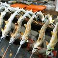 Mùa thu đi Nhật ăn cá đắng