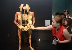 """Khai mạc triển lãm """" Sự bí ẩn đặc biệt của cơ thể người"""""""