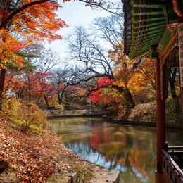 Cung điện Changdeokgung – nơi đẹp nhất để ngắm mùa thu Hàn Quốc