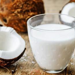 5 lợi ích của sữa dừa cho da