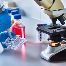 Tế bào gốc: hy vọng mới của người mắc bệnh tim?