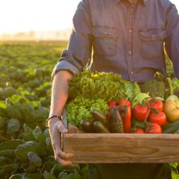 Tại sao bạn nên ăn thực phẩm hữu cơ?