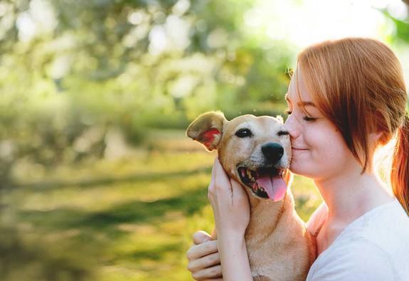 6 căn bệnh có thể bạn sẽ lây từ vật nuôi