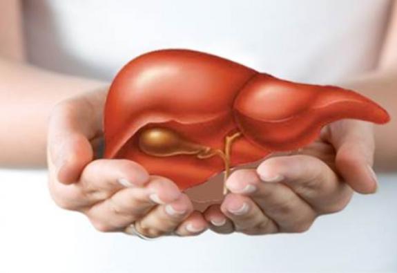 Khi nào phải giải độc cho gan?