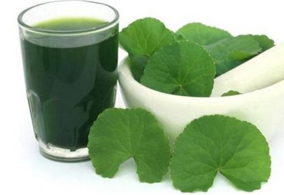 8 vị thuốc dân gian giúp giải độc gan