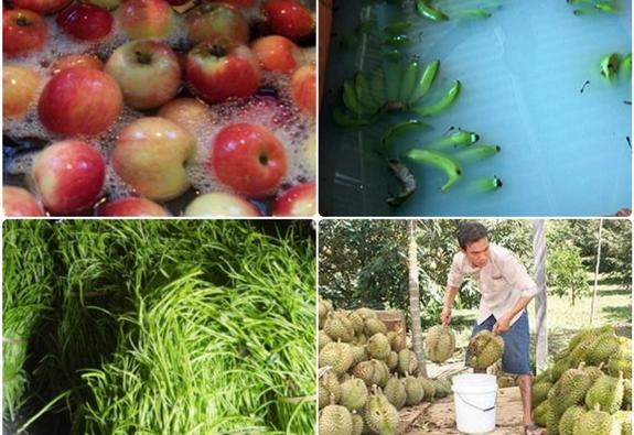 Cảnh giác hóa chất bảo quản trên rau, củ, quả