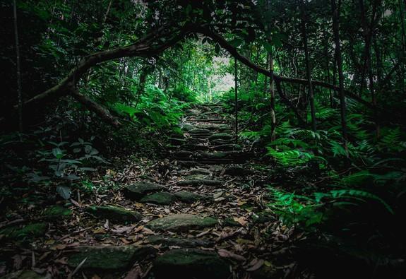 8 địa điểm để bạn làm quen với trekking tại Việt Nam
