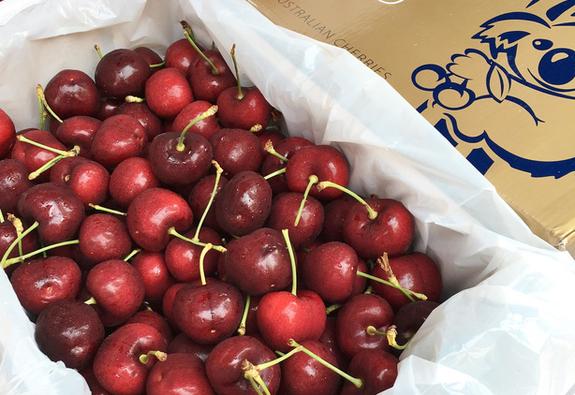 Bắt đầu vào mùa cherry Úc, giá cao nhưng vẫn đắt khách