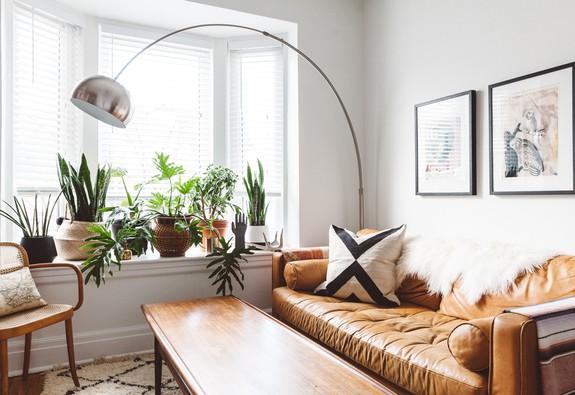 10 ý tưởng đưa cây vào trong nhà