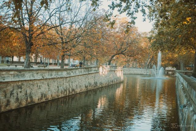 Mùa thu vàng mơ mộng ở Nîmes - Ảnh 20.