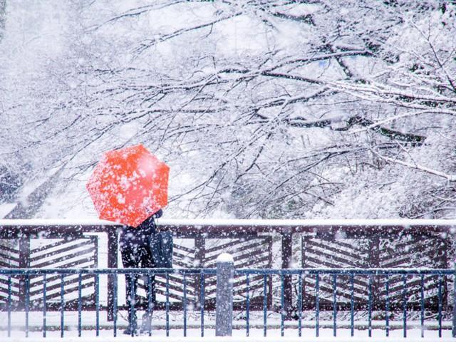 Kyoto mùa đông: cảnh đẹp cố đô chìm trong tuyết trắng - Ảnh 1.