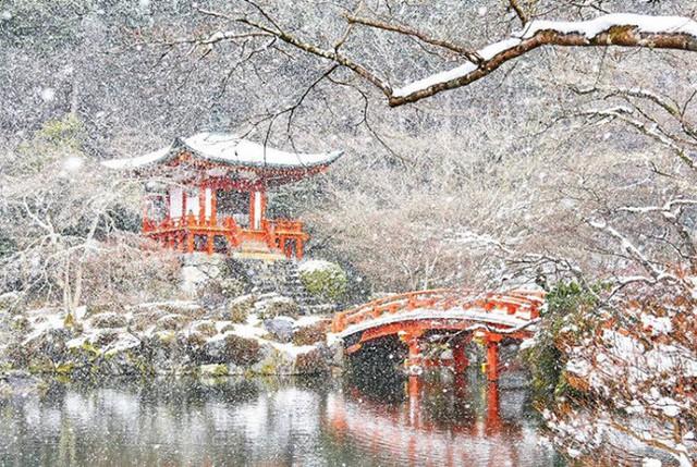 Kyoto mùa đông: cảnh đẹp cố đô chìm trong tuyết trắng - Ảnh 6.
