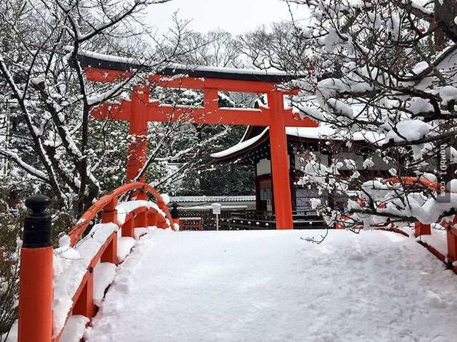 Kyoto mùa đông: cảnh đẹp cố đô chìm trong tuyết trắng - Ảnh 7.