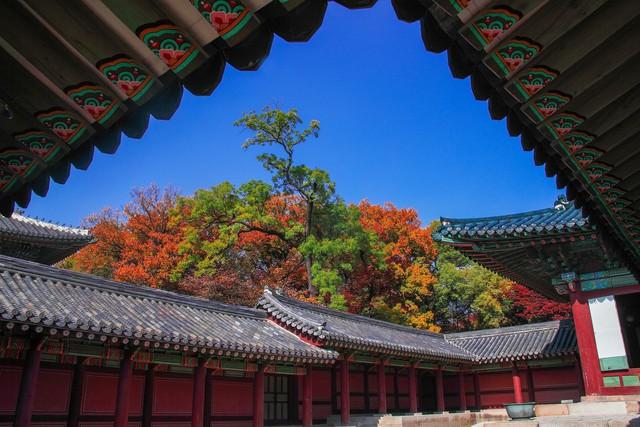 Cung điện Changdeokgung – nơi đẹp nhất để ngắm mùa thu Hàn Quốc - Ảnh 9.