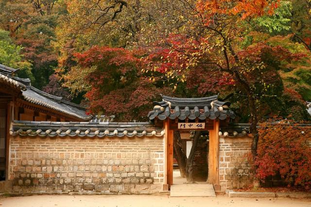Cung điện Changdeokgung – nơi đẹp nhất để ngắm mùa thu Hàn Quốc - Ảnh 11.
