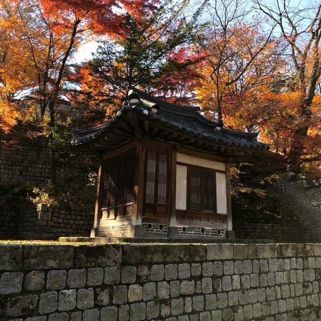 Cung điện Changdeokgung – nơi đẹp nhất để ngắm mùa thu Hàn Quốc - Ảnh 12.