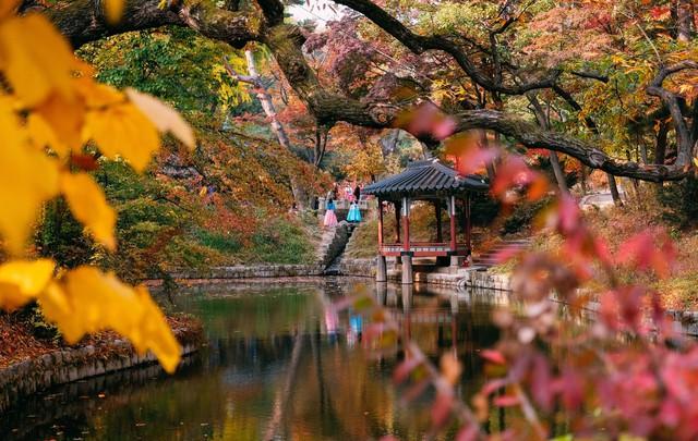 Cung điện Changdeokgung – nơi đẹp nhất để ngắm mùa thu Hàn Quốc - Ảnh 13.