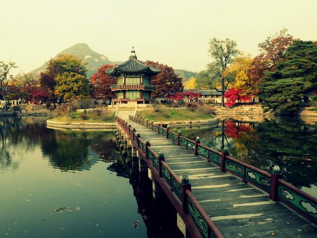 Cung điện Changdeokgung – nơi đẹp nhất để ngắm mùa thu Hàn Quốc - Ảnh 8.