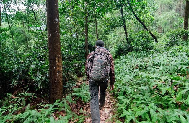 8 địa điểm để bạn làm quen với trekking tại Việt Nam - Ảnh 2.