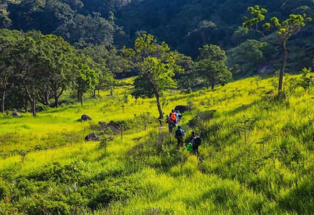 8 địa điểm để bạn làm quen với trekking tại Việt Nam - Ảnh 15.