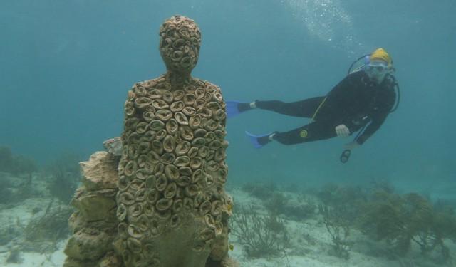 Lặn biển để ngắm những pho tượng bí ẩn và tuyệt đẹp - Ảnh 14.