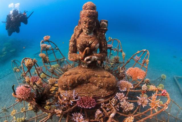 Lặn biển để ngắm những pho tượng bí ẩn và tuyệt đẹp - Ảnh 7.