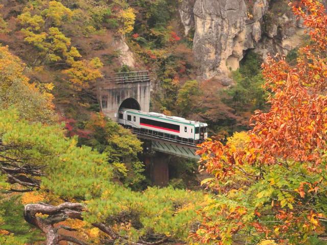 Lên chuyến tàu đến Tohoku mùa lá đỏ - Ảnh 9.
