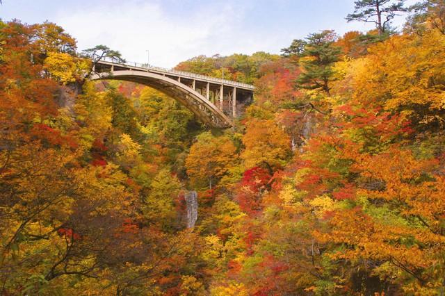 Lên chuyến tàu đến Tohoku mùa lá đỏ - Ảnh 10.