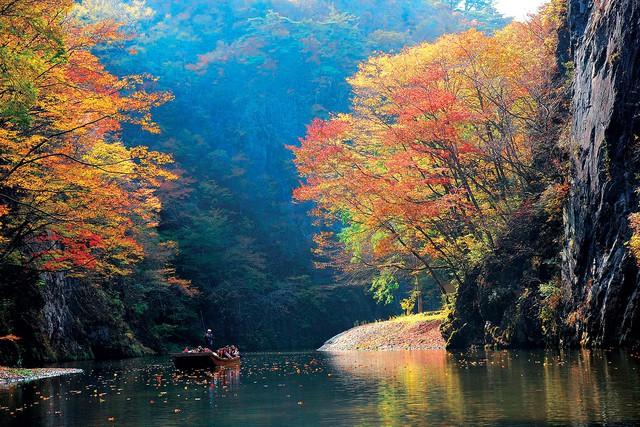 Lên chuyến tàu đến Tohoku mùa lá đỏ - Ảnh 12.