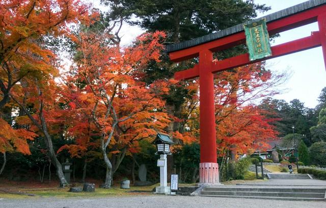 Lên chuyến tàu đến Tohoku mùa lá đỏ - Ảnh 1.