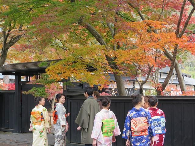 Lên chuyến tàu đến Tohoku mùa lá đỏ - Ảnh 6.