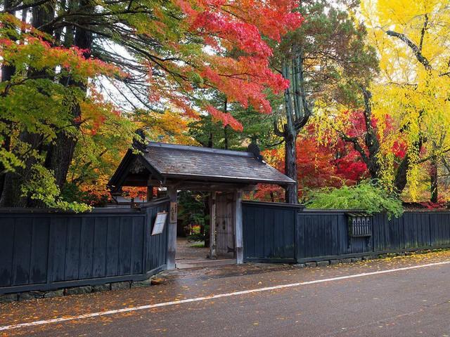 Lên chuyến tàu đến Tohoku mùa lá đỏ - Ảnh 7.