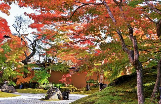 Lên chuyến tàu đến Tohoku mùa lá đỏ - Ảnh 8.