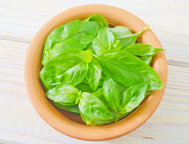 7 lợi ích sức khỏe khi bạn ăn húng quế tươi - Ảnh 2.