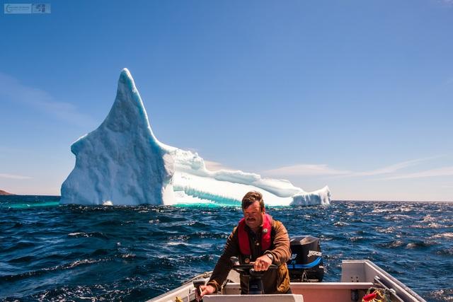 Ngắm băng trôi ở Newfoundland và Labrador - Ảnh 9.