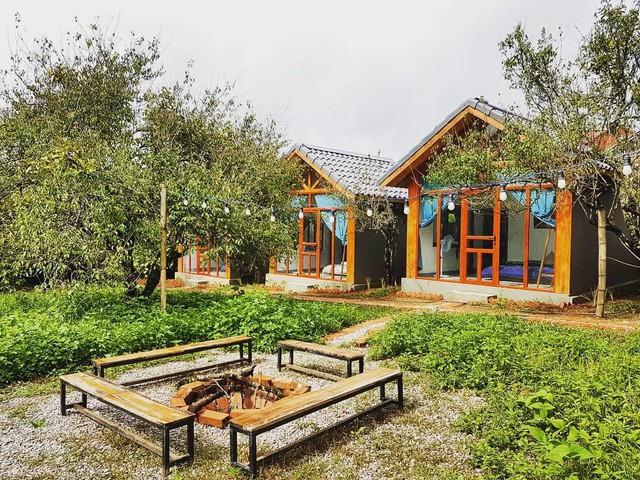 5 homestay đẹp để bạn check-in Mộc Châu - Ảnh 2.