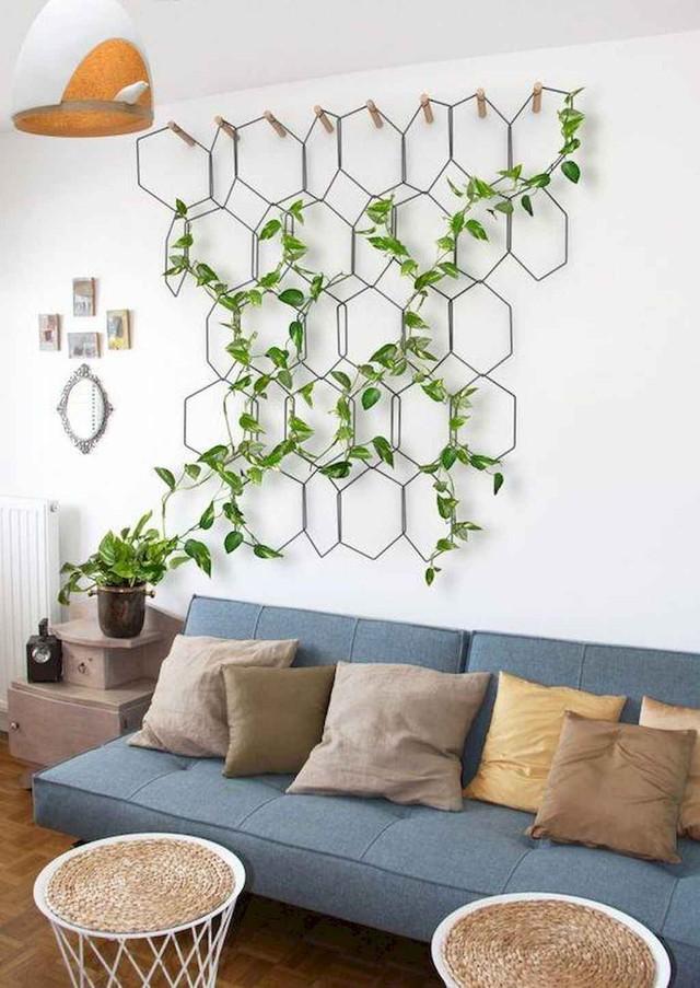10 ý tưởng đưa cây vào trong nhà - Ảnh 5.