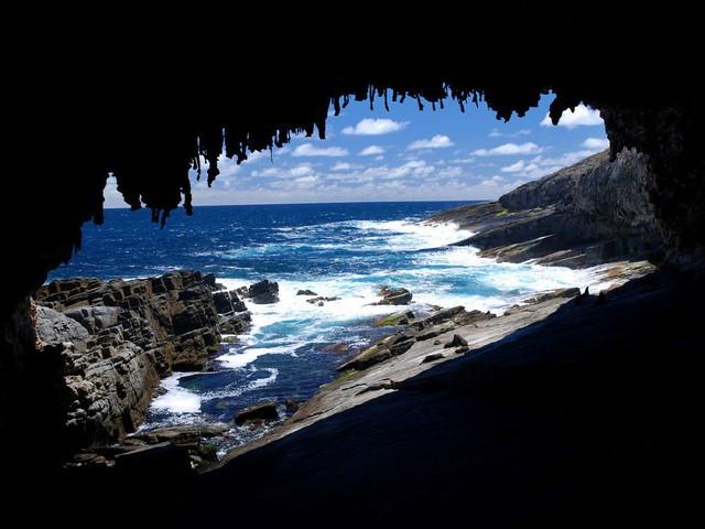 Kangaroo Island: đến thật gần thiên nhiên hoang dã - Ảnh 3.