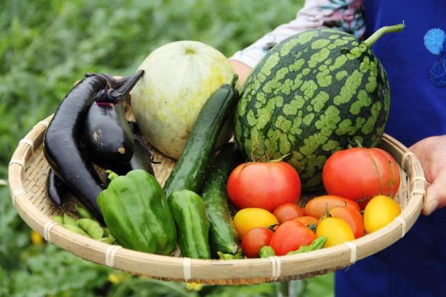7 điều bạn có thể làm để giải độc cơ thể mỗi ngày - Ảnh 2.