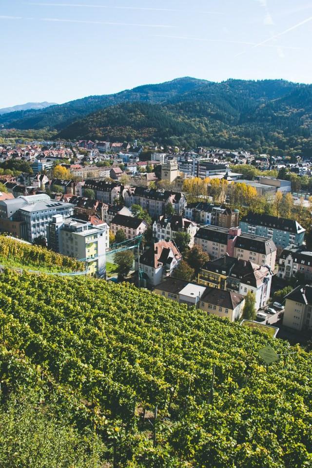 Freiburg: thành phố xanh đẹp như cổ tích - Ảnh 16.