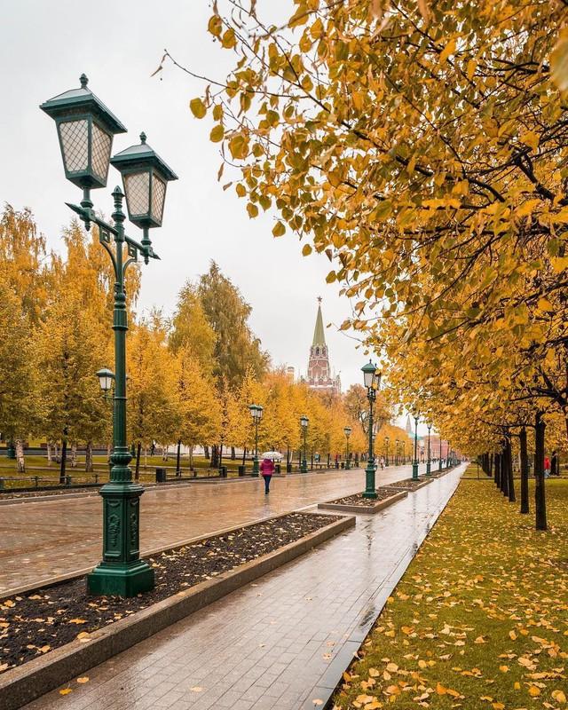 Ngắm mùa thu vàng ở cố đô của nước Nga - Ảnh 9.