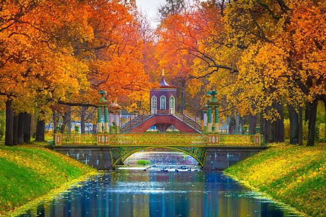 Ngắm mùa thu vàng ở cố đô của nước Nga - Ảnh 3.