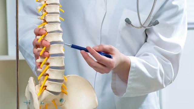 5 bài tập trị liệu cho cột sống cho nhân viên công sở - Ảnh 1.