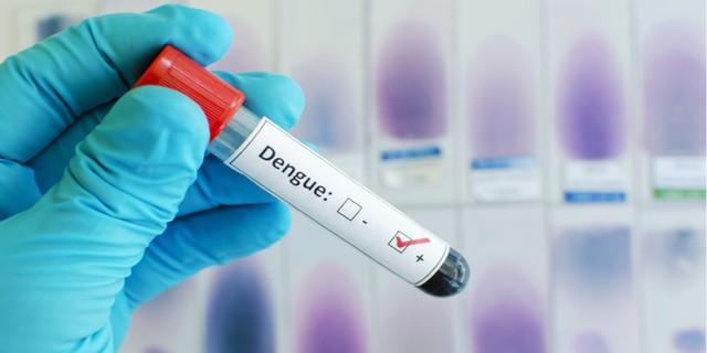 Thực phẩm giúp tăng tiểu cầu tự nhiên khi điều trị sốt xuất huyết - Ảnh 2.