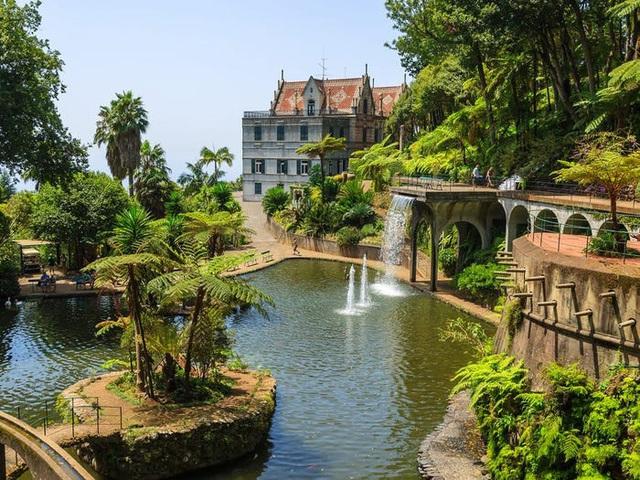 Quần đảo Madeira được vinh danh là điểm đến tốt nhất ở châu Âu  - Ảnh 19.